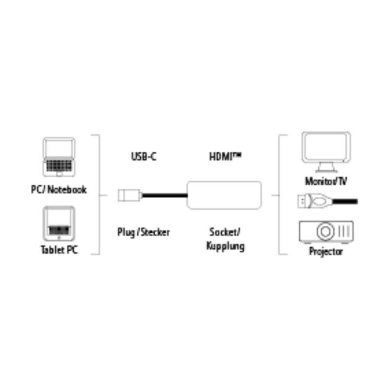 Адаптер Hama H-135726 00135726 HDMI (f) USB Type-C (m) 0.1м черный
