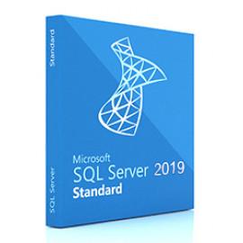 ПО Microsoft SQL Svr Standard Edtn 2019 English DVD 10 Clt (228-11548)